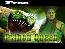 pythonqueen